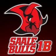 Saale Bulls Amateure